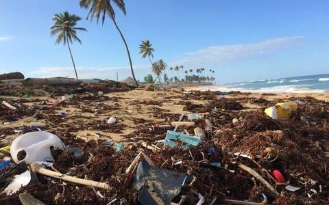 importancia de reciclar y cuidar del medio ambiente